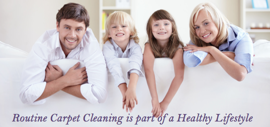 best carpet cleaners danville ca